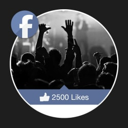 2500 Facebook Fan Page Likes