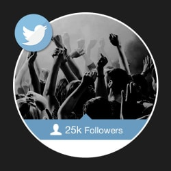 25000 Twitter Followers